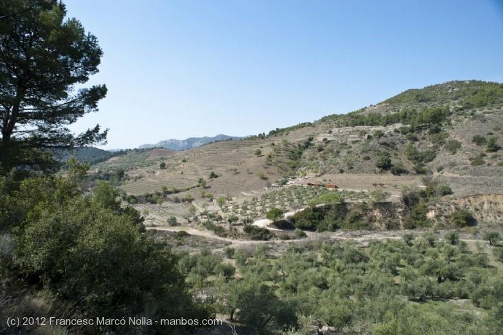 El Priorato La Comarca del Priorato Tarragona