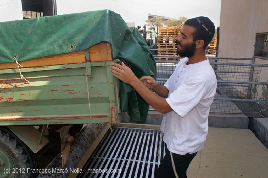 El Priorato Rabinos elaborando vino Kosher Tarragona