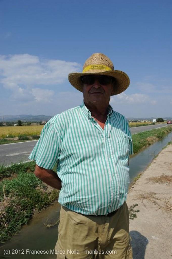 El Delta del Ebro Es Tiempo de Cosecha Tarragona