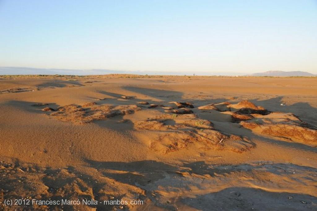 El Delta del Ebro La Solitaria Playa del Fangar Tarragona