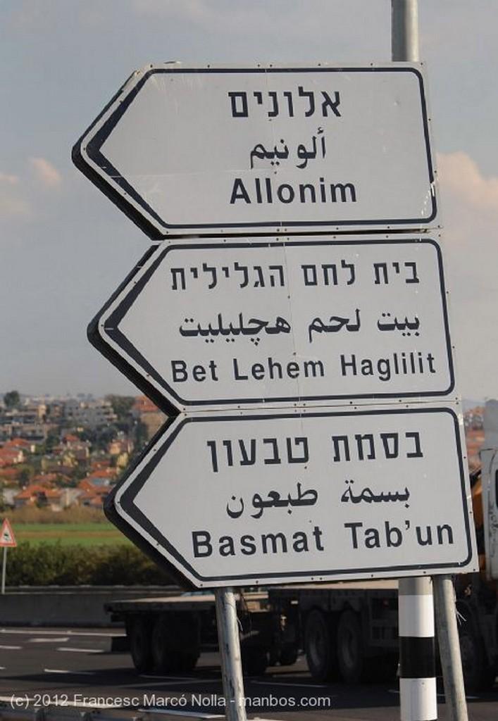 Nazaret Multicultural Galilea