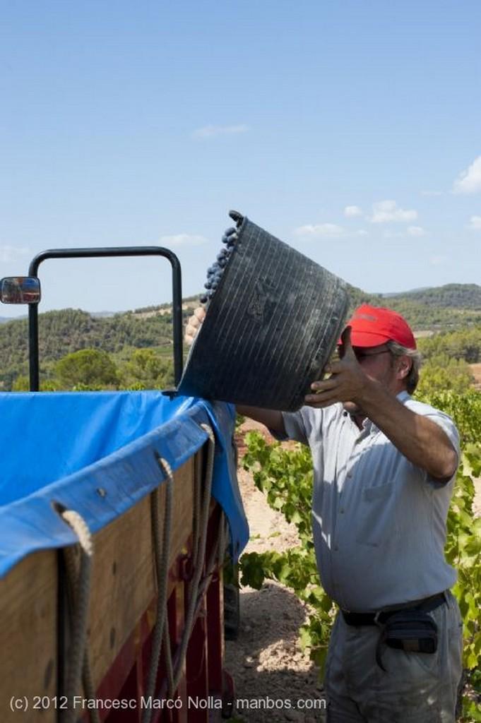 El Priorato Tierra de Vinos Tarragona