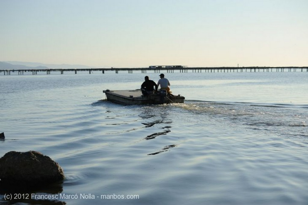 El Delta del Ebro Hacia las Bateas de Marisco del Fangar Tarragona