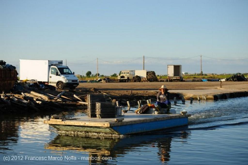El Delta del Ebro Embarcadero de Mariscos del Fangar Tarragona