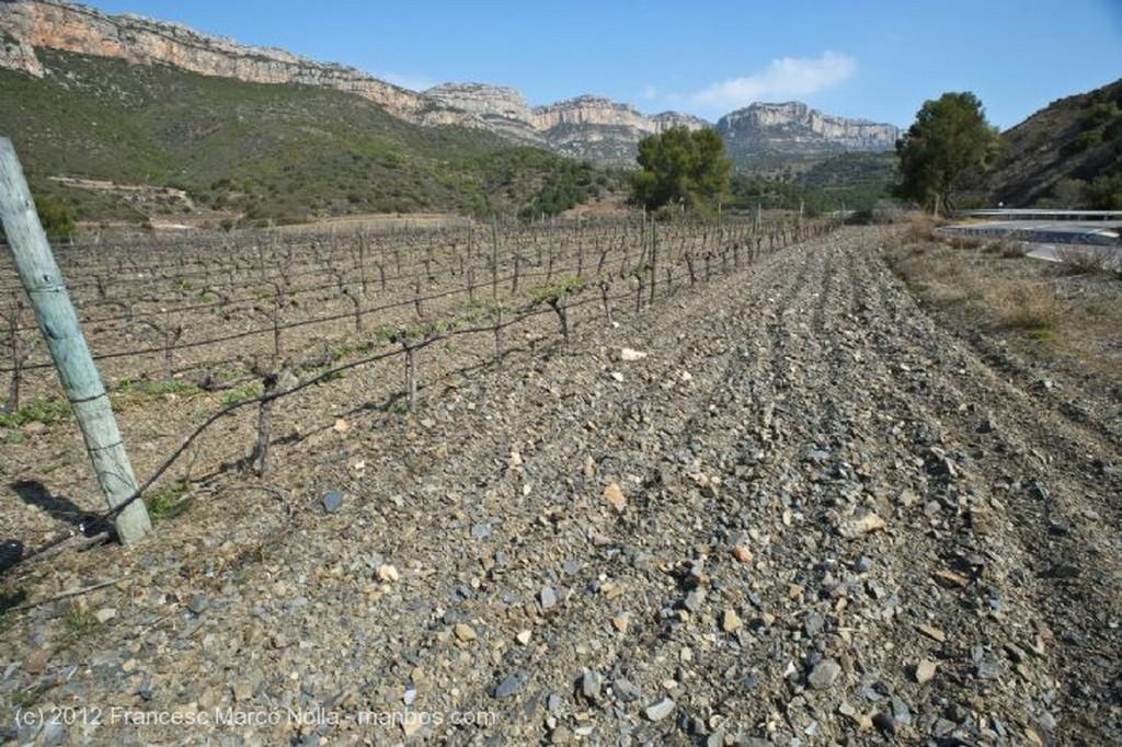 El Priorato Panoramica de Poboleda Tarragona