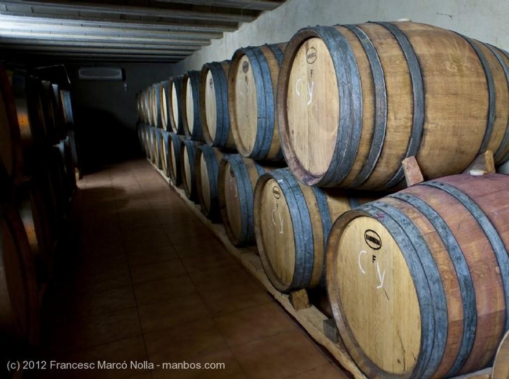 El Priorato Botas de Roble Tarragona