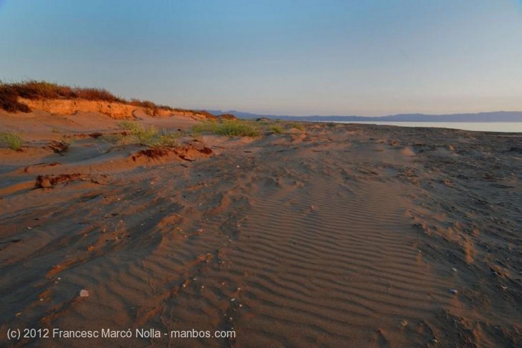 El Delta del Ebro Los Primeros Rayos del Sol en el Delta Tarragona