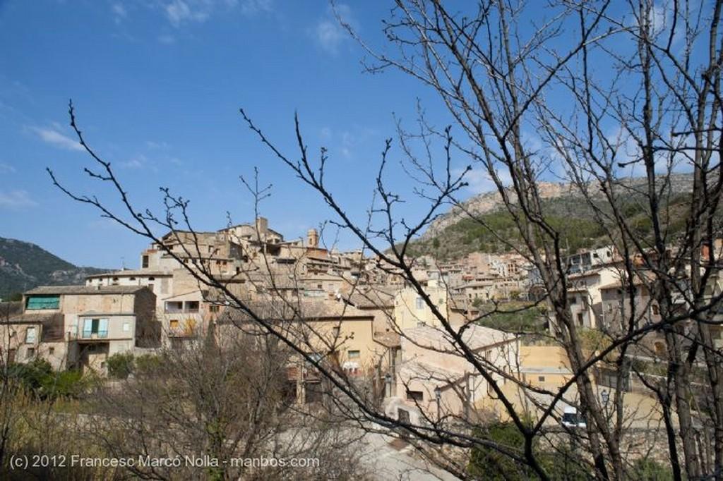 El Priorato Productos de la Tierra Tarragona