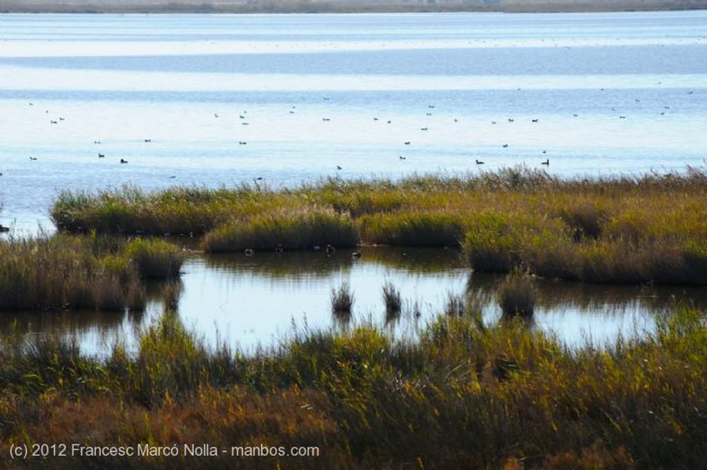 El Delta del Ebro Laguna La Encanyissada Tarragona