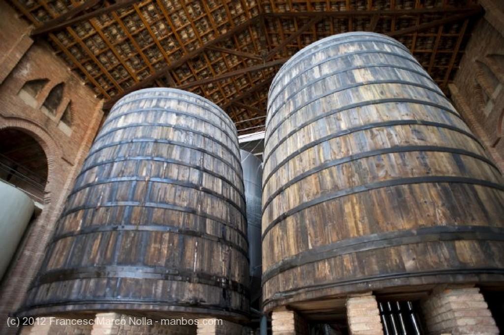 El Priorato Modernas Cisternas Tarragona