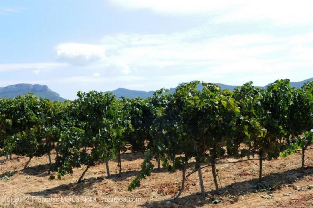El Priorato Los Campos del Priorato Tarragona