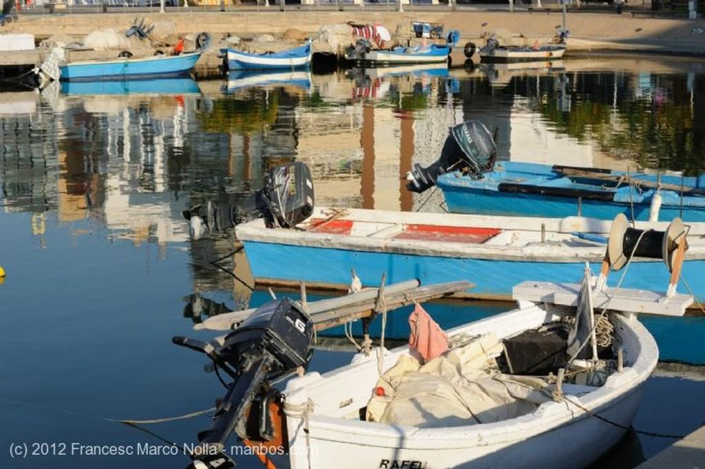 El Delta del Ebro Puerto de L Ampolla Tarragona