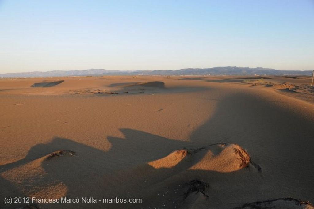 El Delta del Ebro Las Dunas de la Punta del Fangar Tarragona