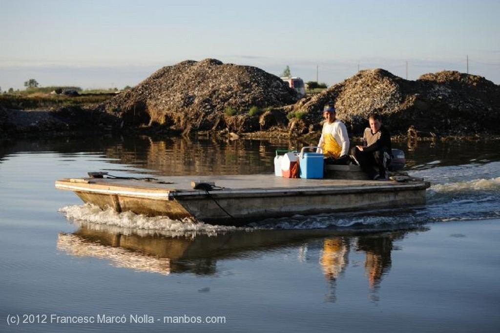 El Delta del Ebro Las Bateas de Marisco de la Bahia del Fangar Tarragona