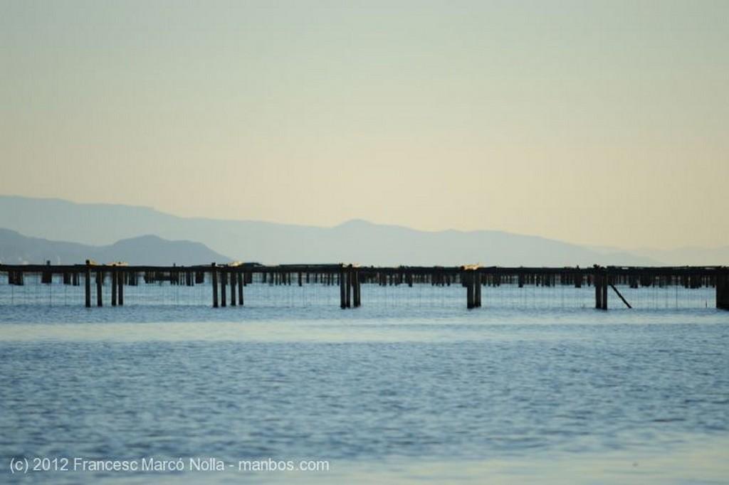 El Delta del Ebro Dos Viejas Barcas Tarragona