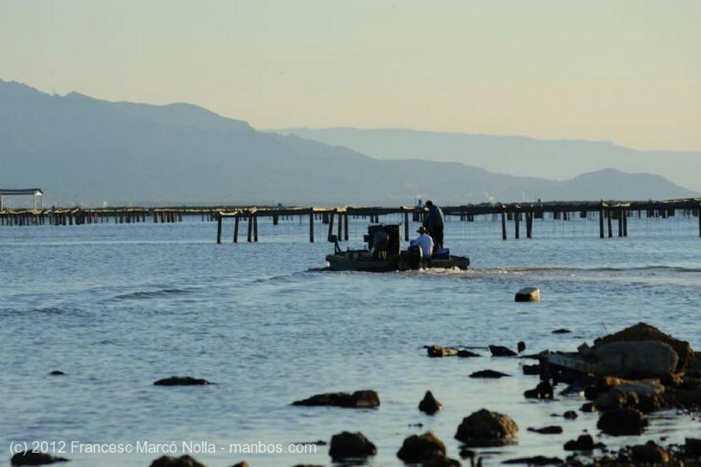 El Delta del Ebro Joven Pescador en la Playa de la Marquesa Tarragona
