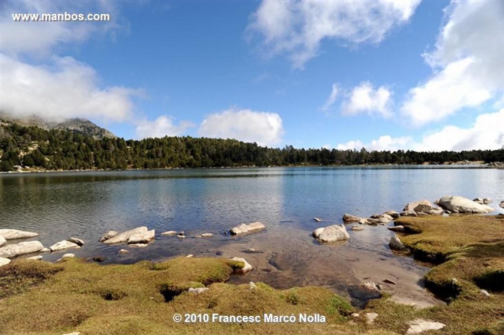 Cerdanya Malniu Senderos del Bosque  Gerona
