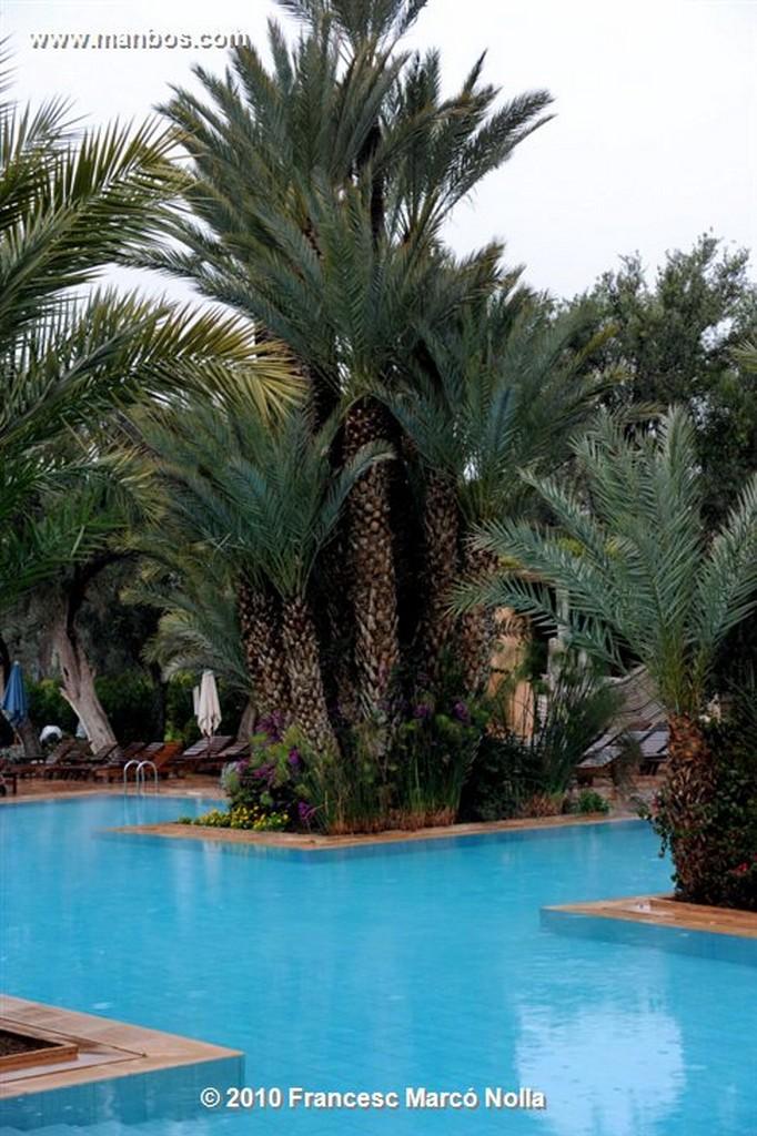 Marruecos  la palmeraie-marrakech Marruecos