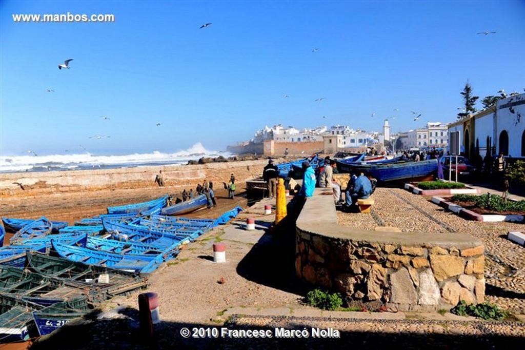 Marruecos  panoramica curiosa-esaouira Marruecos