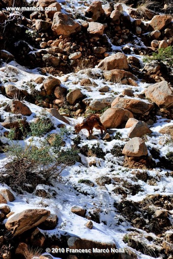 Marruecos  La Cascada- valle del ourika- cordillera del atlas Marruecos