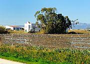 Delta del Ebro, El Delta del Ebro, España