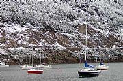 Camara canon Lago Lacar Enrique Rosas EL BOLSON Foto: 9726