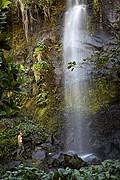 Anse des cascades, Reunion, Reunion