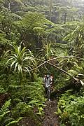 Tahiti, Tahiti, Polinesia Francesa