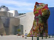 Camera Olympus c 5060 wz Puppy Miguel Angel Vicente Gallery BILBAO Photo: 8744