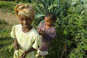 Etiopia , Etiopia , Etiopia