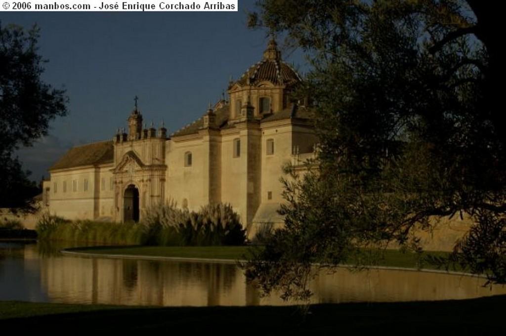 Carmona Paseo por Carmona Sevilla