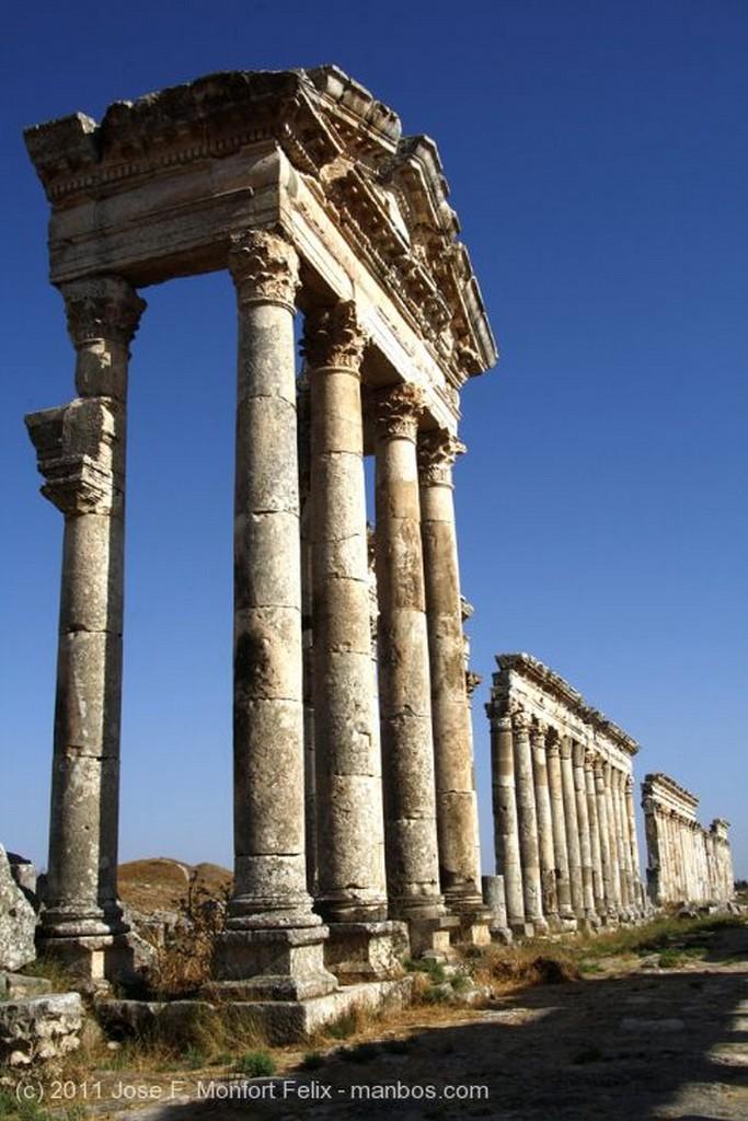 Apamea Ruinas de Apamea Hama