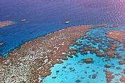 La gran barrera de coral, Cairns, Australia