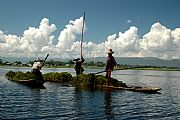 Camera NIKON D70s Sacando algas Jorge Gabaldon Garcia Gallery INLE LAKE Photo: 10755