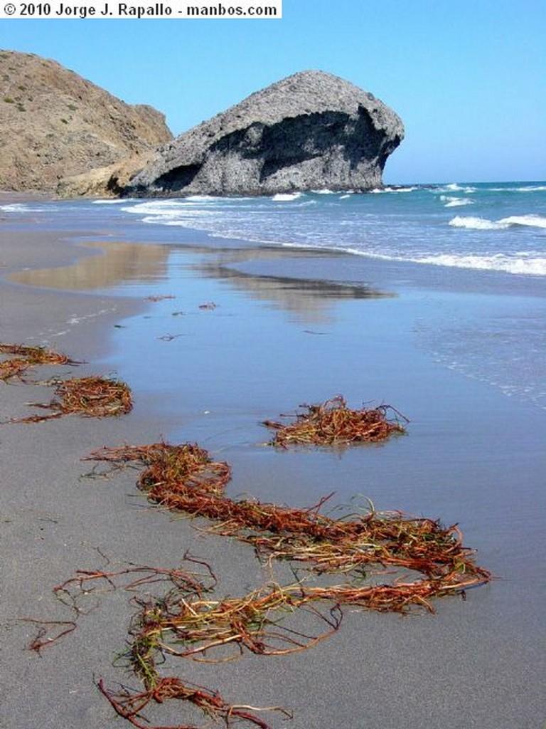 Parque Natural Cabo de Gata Un Paseo Almeria