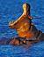 Naturaleza Hipopótamo Parque Nacional Kruger