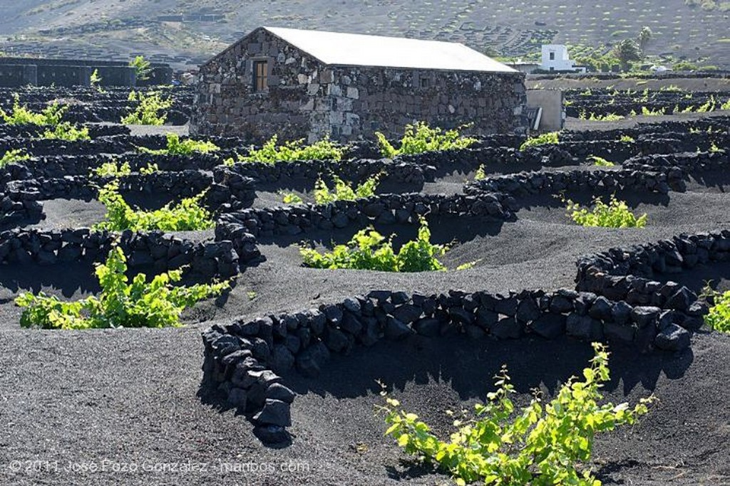 Teguise Erosion Milenaria Lanzarote