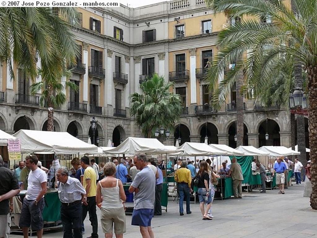 Barcelona Bancos Ondulados Barcelona
