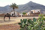 La Alcogida, Tefia, España