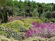 Jardin Botanico de Barcelona, Barcelona, España