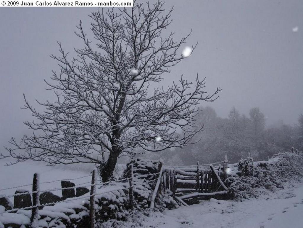 Fotos De Samos Lugo Spain Nieve Manbos Com Foto 18367 11 Autor Juan Carlos Alvarez Ramos