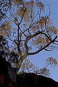 Mt. Remarkable, Mt. Remarkable, Australia