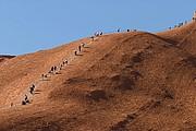 Camara Canon EOS 10D Subida a Ayers Rock (Uluru) Australia PARQUE NACIONAL ULURU-KATA TJUTA Foto: 14600