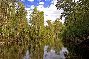 Camara Canon EOS 10D Australia PARQUE NACIONAL NITMILUK Foto: 14582