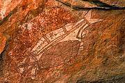 Camara Canon EOS 10D Pinturas aborigenes Australia PARQUE NACIONAL DE KAKADU Foto: 14576