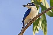 Parque Nacional de Kakadu, Parque Nacional de Kakadu, Australia