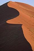 Camara Canon EOS-1D Desierto del Namib Namibia NAMIB NAUKLUFT PARK Foto: 9969