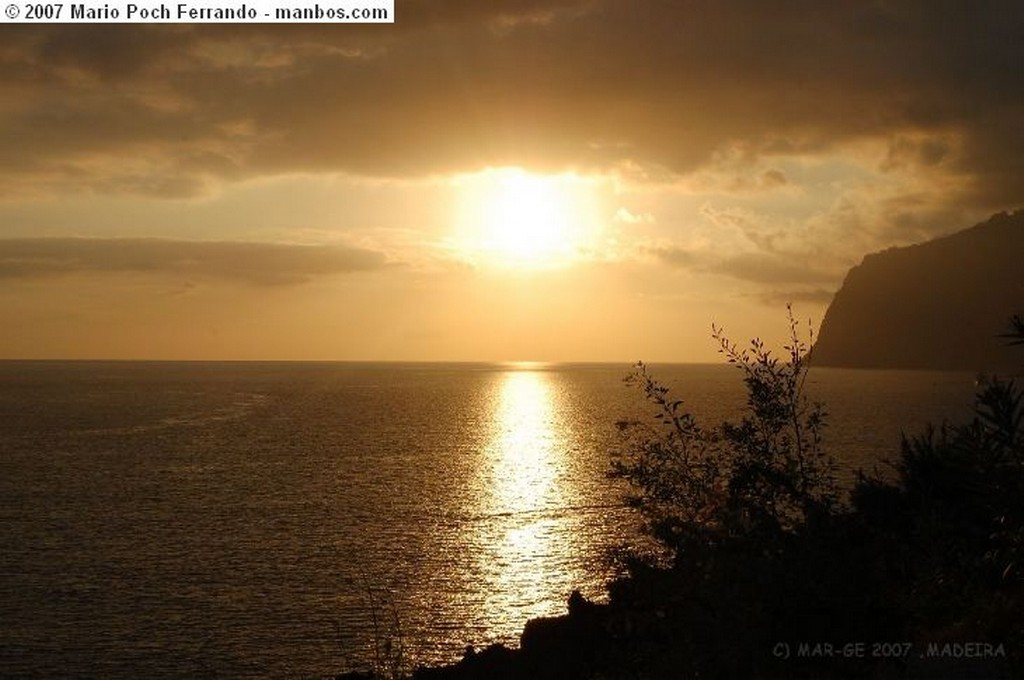 Funchal Censando tortugas Madeira