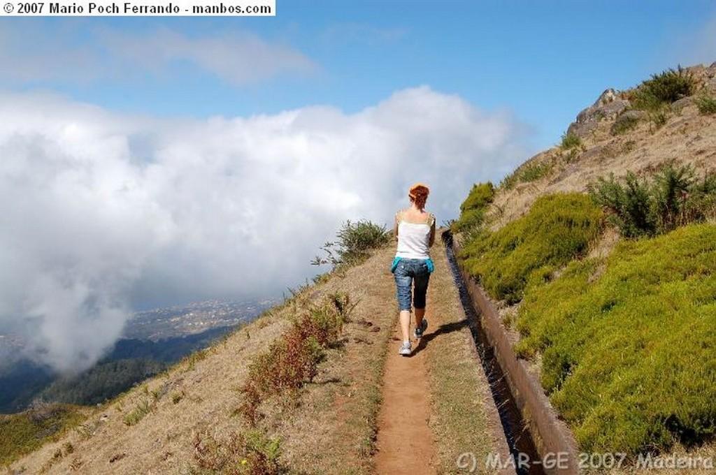 Funchal Cabo Girao se adormece Madeira
