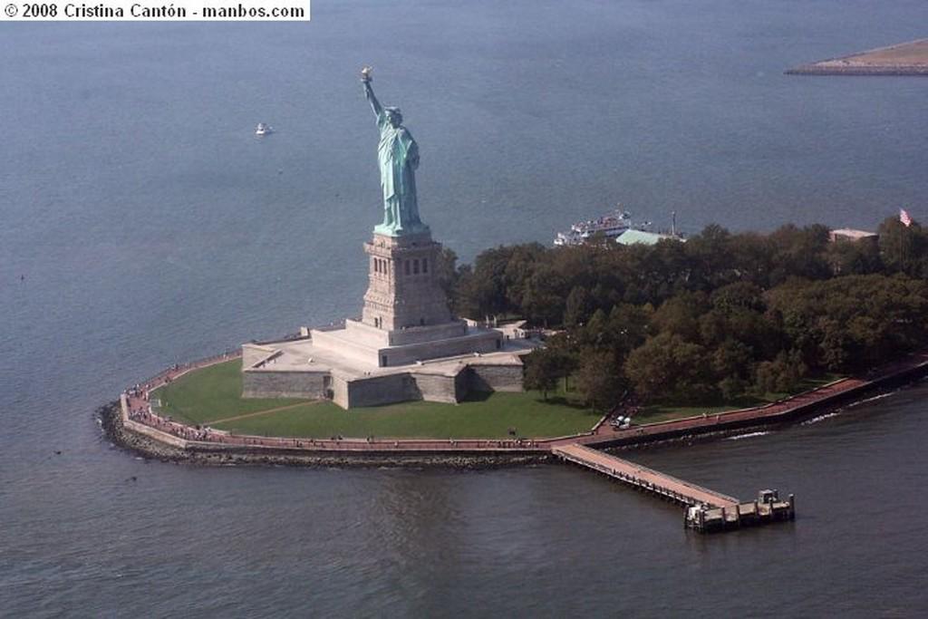 Nueva York Seegull in the mist Nueva York